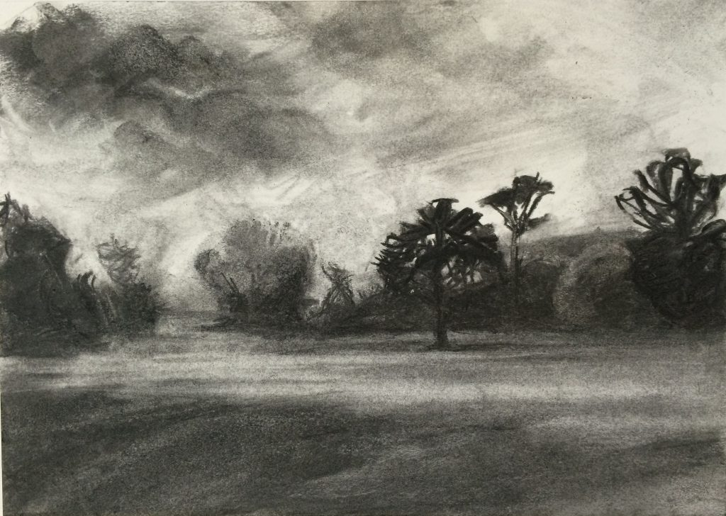 End of the Day Trees, sketch 2